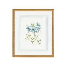 See Details - Bl Floral W/ribbon-c