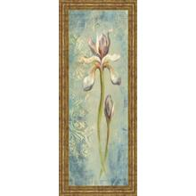 """Floral XI"" By Lee Hazel Framed Print Wall Art"
