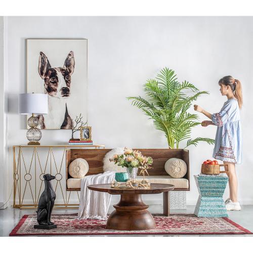 A & B Home - Dog