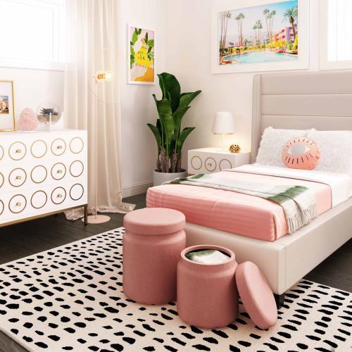 Tov Furniture - Kris Salmon Storage Ottomans - Set of 2