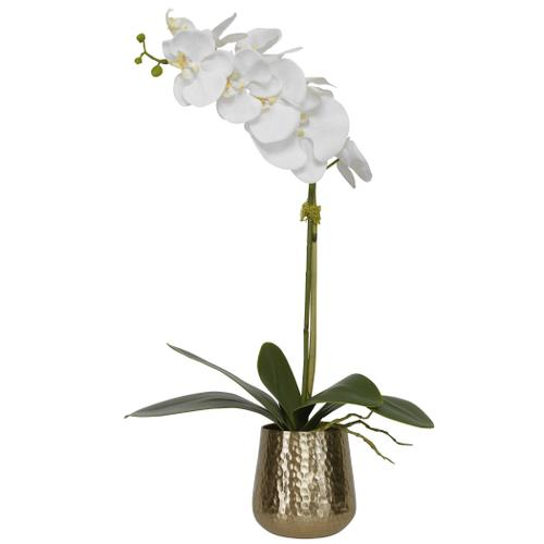 Uttermost - Cami Orchid, Brass