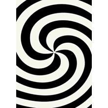 3D-804 BLACK Spiral Shaggy Rug