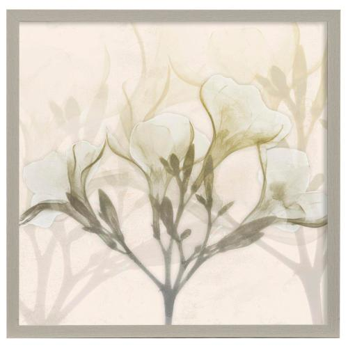 Style Craft - Sunkissed Oleander  32in X 32in Promotional Framed Print Under Glass  Ready to Hang