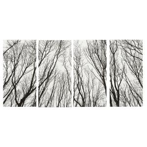Black & White Tree Silhouette Wall Decor (4 pc. ppk.)