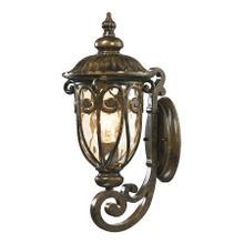 Logansport 1-Light Outdoor Wall Lamp in Hazelnut Bronze
