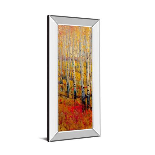 """Vivid Birch Forest I"" By Tim Otoole Mirror Framed Print Wall Art"