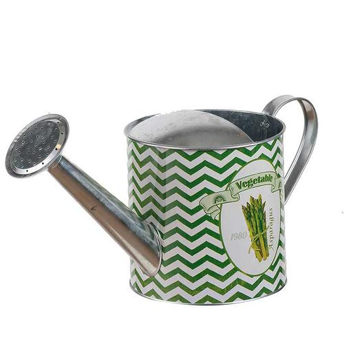 Abington Watering Can GRN