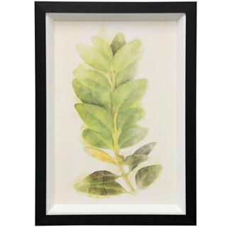 Garden Botanical III  15in X 21in  Framed Print Under Glass