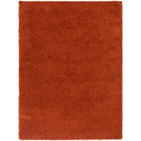 Bliss shag BLI-2302 2' x 3'