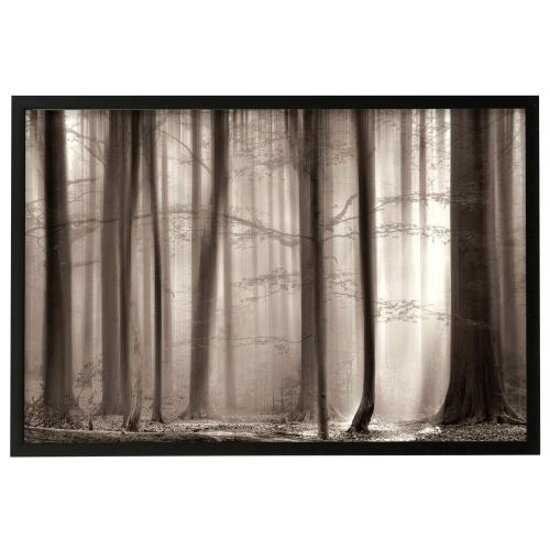 Style Craft - The Cloaking Woods  Made in USA  Artist Print  Faux Wood Frame Under Glass  Attached Hanging Har