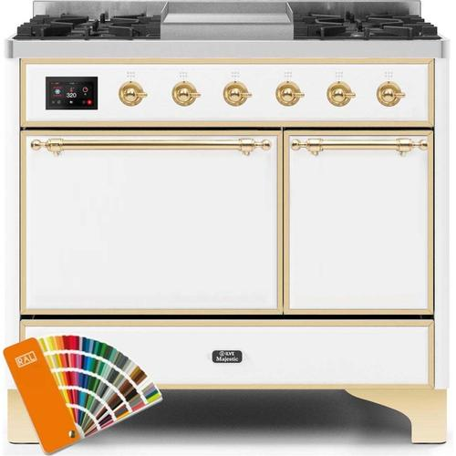 40 Inch Custom RAL Color Dual Fuel Natural Gas Freestanding Range