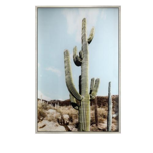 Crestview Collections - PRICKLY 2