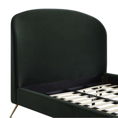 Product Image - Vivi Forest Green Velvet Bed in Queen