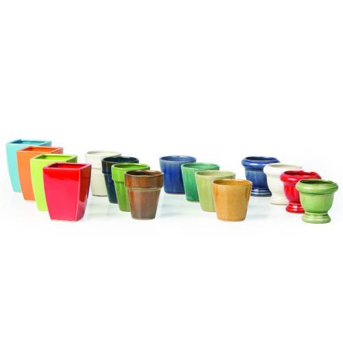 Bellini Fairy Grd Pot 48pc Assort 4 mix 4 clrs 3ea