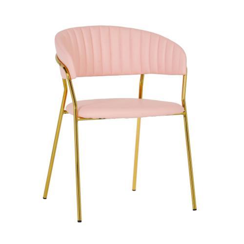 Padma Blush Vegan Leather Chair (Set of 2)