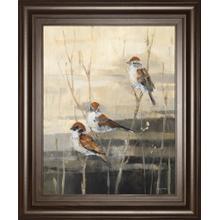 """Evening Sanctuary III"" By Amy Tillmon Framed Print Wall Art"