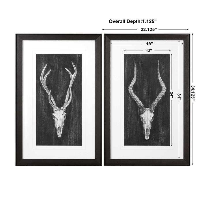 Uttermost - Rustic European Mounts Framed Prints, S/2