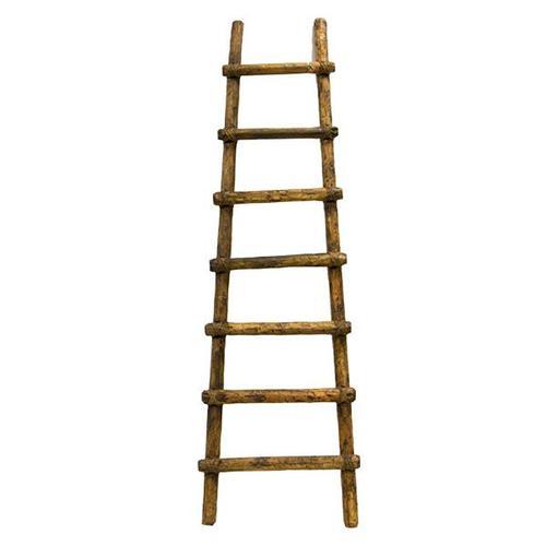 6' Primitive Ladder
