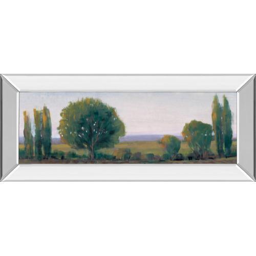 """Panoramic Treeline I"" By Tim Otoole Mirror Framed Print Wall Art"