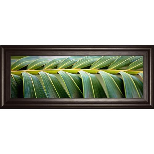 """Palma I"" By Susan Bryant Framed Print Wall Art"