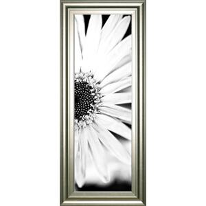 """White Bloom 2"" By Susan Bryant Framed Print Wall Art"