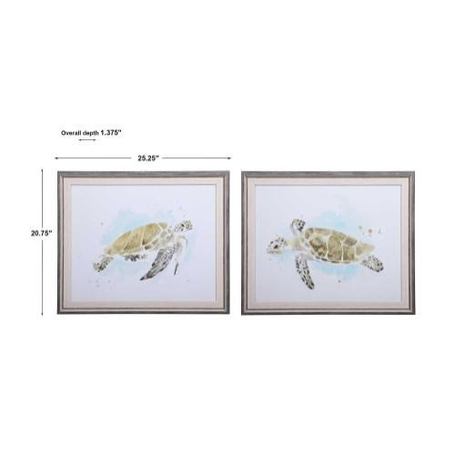 Sea Turtle Study Framed Prints, S/2