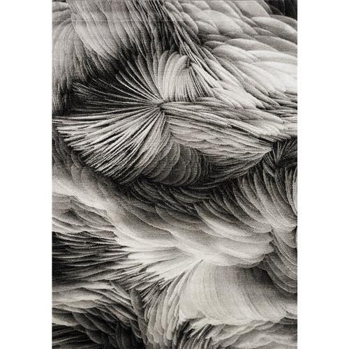 Platinum 3365 Grey Black 6 x 8