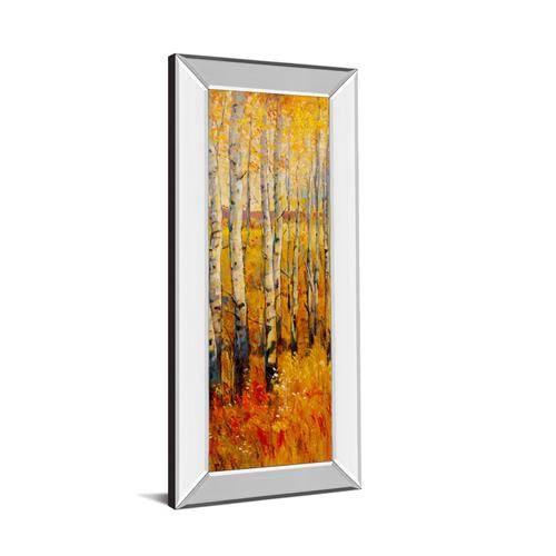"""Vivid Birch Forest Il"" By Tim Otoole Mirror Framed Print Wall Art"