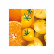 See Details - Oranges Tomatoes Potatoes Fine Wall Art