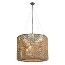 See Details - Rozelly Hanging Lamp