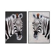 Zebra Positive & Negative S/2 Product Image