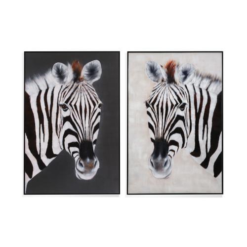 Zebra Positive & Negative S/2