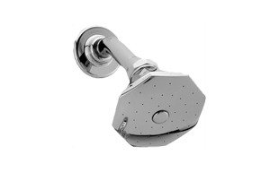 Topaz Showerhead with Shower Arm Product Image
