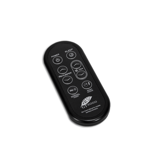 Replacement Remote Control for GT 3000