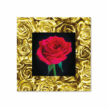 See Details - Red Rose With Background Miniature Fine Wall Art