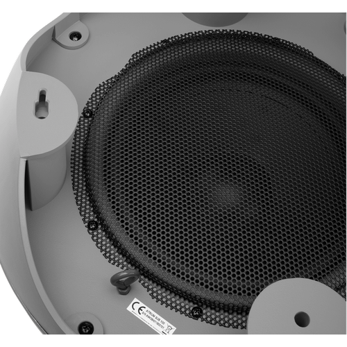 Outdoor Subwoofer with 10-inch Woofer in Gray