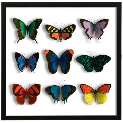 Style Craft - Floating Butterflies Mate  32in X 32in Promotional Framed Print Under Glass  Ready to Hang
