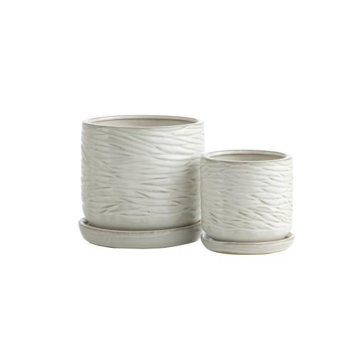 White Minnows Petits Pots w/ attchd saucer, Set of 2