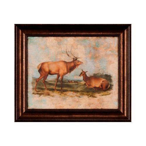 The Ashton Company - Elk