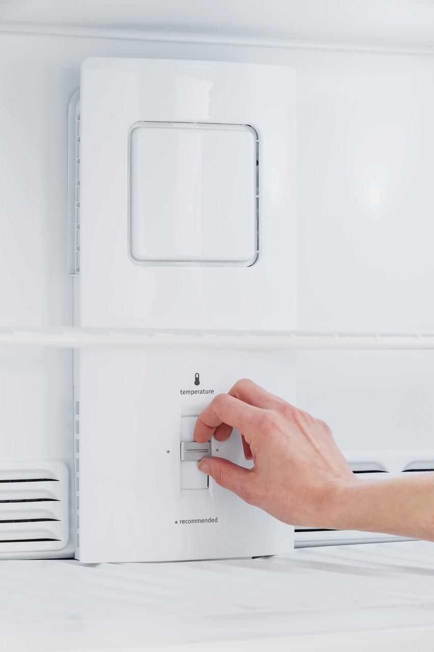 16.3 Cu. Ft. Top Freezer Refrigerator Photo #4