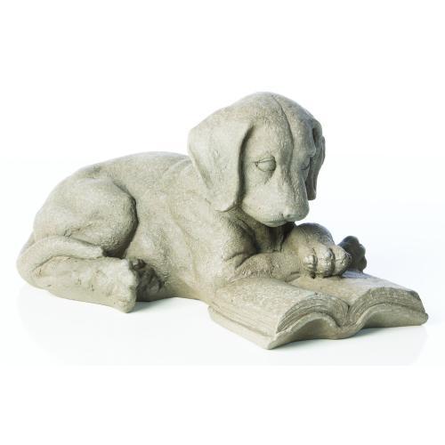 Reading Puppy (1/carton)