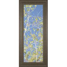 """Spring Poplars III"" By Sharon Chandler Framed Print Wall Art"