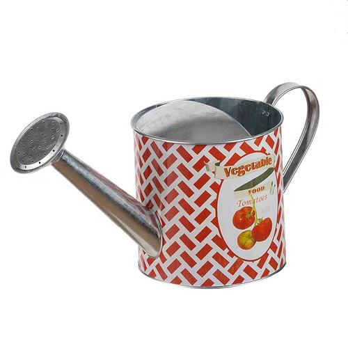 A & B Home - Abington Watering Can Red