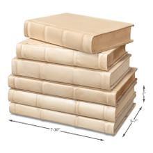 See Details - Books, Set Of 6, Antique White