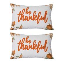 S/2 Be Thankful Pillow
