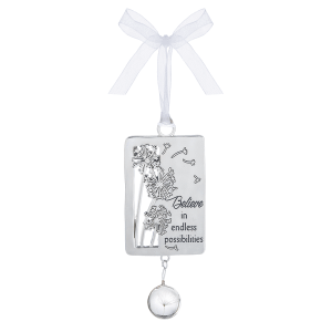 Ornament - Believe in endless possibilities
