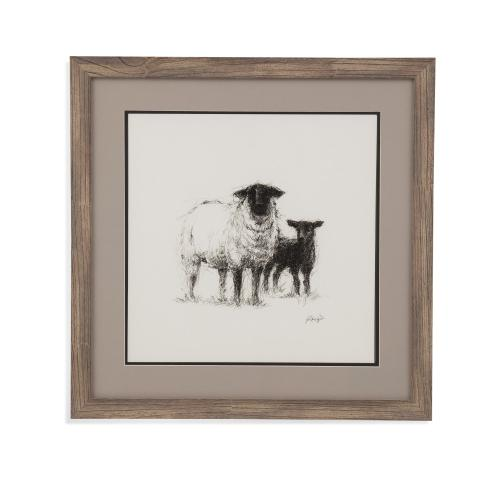 Charcoal Sheep Study II