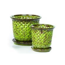 Fossette P.Pots w/attchd saucer Grn S/2 4sets/ctn