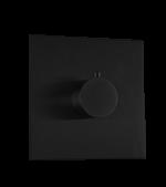 Thermostatic Valve Trim Kit, R+S Black Product Image