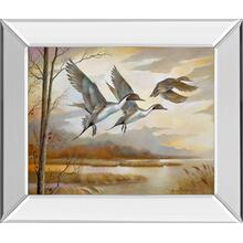 """Pintails Mirror Framed Print Wall Art"